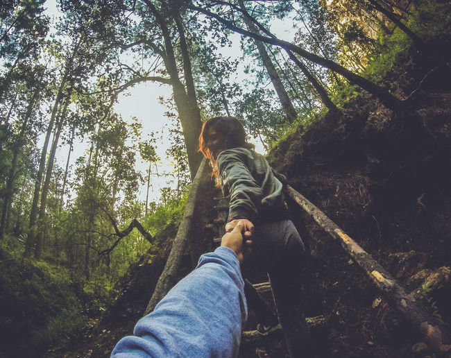 Cropped Image Of Boyfriend Holding Hand Of Girlfriend On Wooden Stairs In Forest