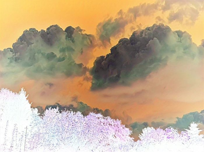 Trees Dramatic Sky Sky And Clouds Colorful Negative Effect Nature Outdoor Photography
