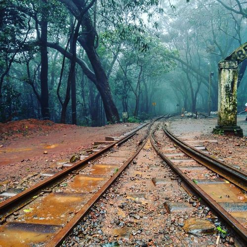 TakeoverContrast Railroad Track The Way Forward Outdoors Green Color Nature Beauty In Nature Forestwalk WoodLand Rainy Days☔ Mumbaidairies Matheran Hills Nature Forest Of Lost Souls Solitude Forest Photography Foggy Forest