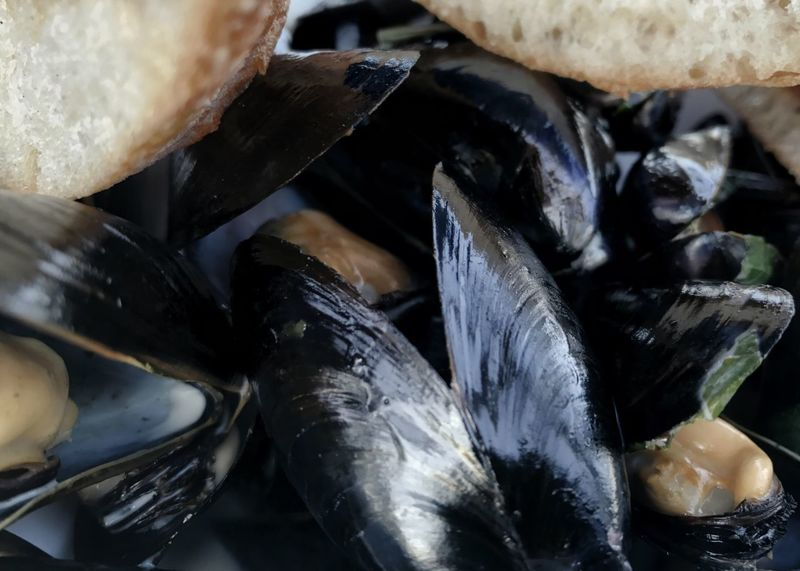 Bucket full of mussels. Mussles Steamed Mussels Bread Close-up Seafood Horizontal Food Healthy Eating Ready-to-eat
