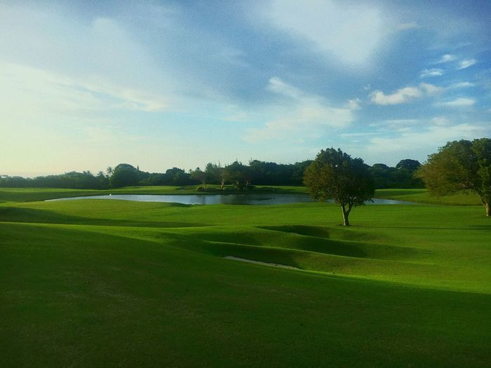 Barbados 2017 Sandylane  (null)Golf Course Picoftheday Green - Golf Course Sky Tree Grass Nature Tranquil Scene Sport Tranquility Day Green Color Golfer Travel Beauty In Nature Water Vacations