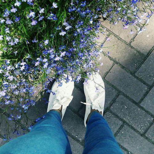 Екатеринбург люблюэтотгород🌃💙 цветы прогулка дендропарк Relaxing спасибозалето Love ♥ солнце☀ лайки