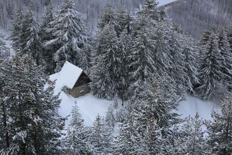 Brezovica Kosovo Home Homesweethome Montana Snow Lovesniw