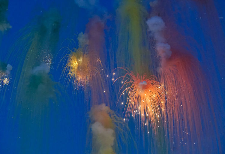 Low angle view of fireworks against sky at dusk