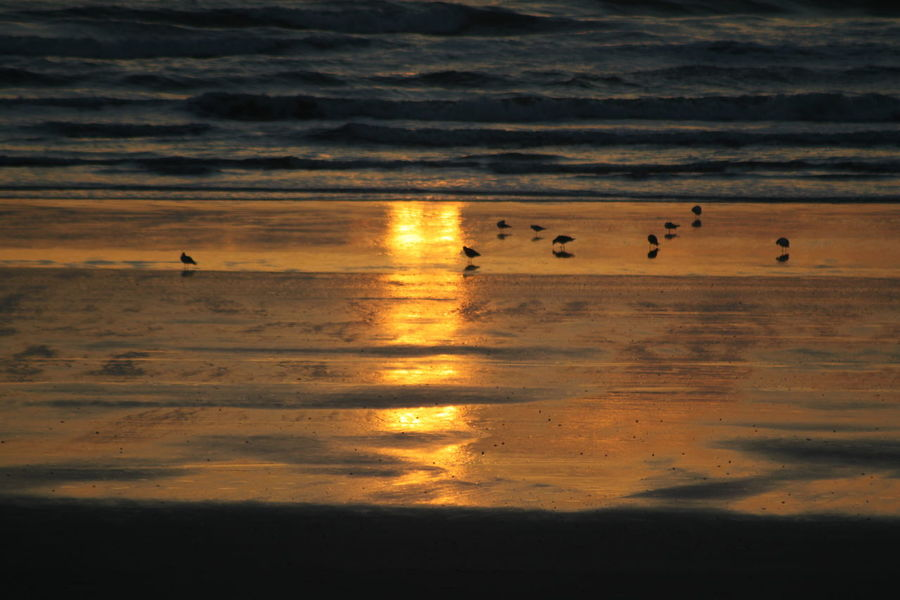 Beach Beauty In Nature No People October Sunrise Outdoors Reflection Scenics Sea Sunrise Tranquility Water