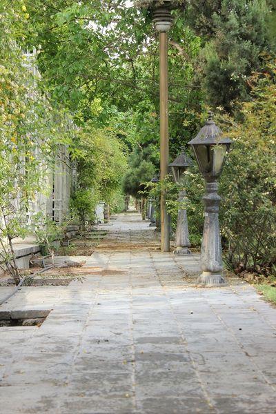 Iran Shiraz, Iran Shiraz_city Eram Garden