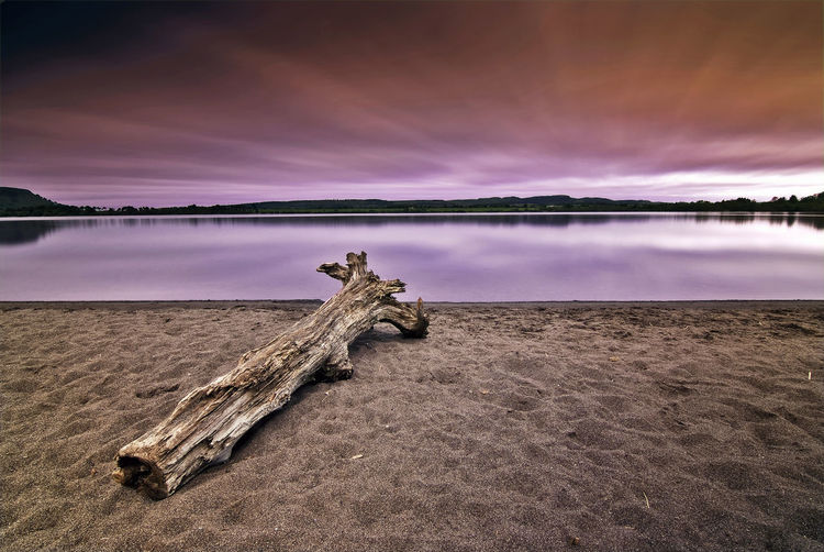 Fallen tree at lake against sky during sunset