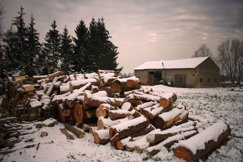 Log Pile Logs Snow Covered Stack Winter Log Snow Tree Cold Temperature Sky Timber No People Woodpile Outdoors Cloud - Sky Building Exterior Day