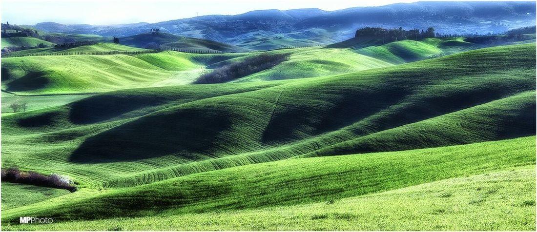 Green Power Eye4photography  Tuscany Landscape_Collection EyeEm Best Shots - Landscape Eye For Photography