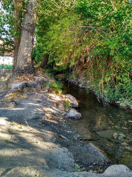 JerezDelMarquesado Sierranevada Parajenatural Relaxing Time Bq Aquaris M5