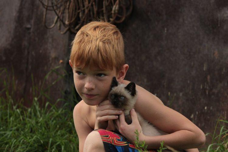 Cute boy holding cat