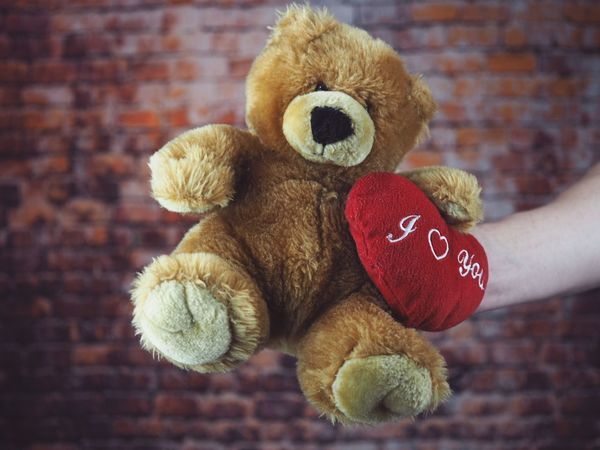 Heart ❤ Hearts Heart Studio Shot Brick Building Bricks Wall Human Body Part Stuffed Toy Human Hand Toy Teddy Bear Hand Close-up Indoors  Day