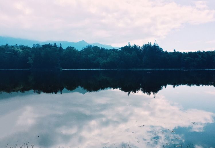 Reflection. Enjoying Life Showcase: February The Week Of Eyeem Iphonephotographyschool Iphonephotoacademy IPhoneography Lake Forest Reflection Japan