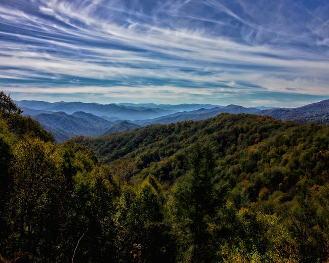 Smoky Mountain Skies Smoky Mountains Scenics - Nature Mountain Beauty In Nature Cloud - Sky Tranquil Scene Sky Tranquility Landscape Tree Environment Non-urban Scene No People Nature Mountain Range Idyllic Day Outdoors Land