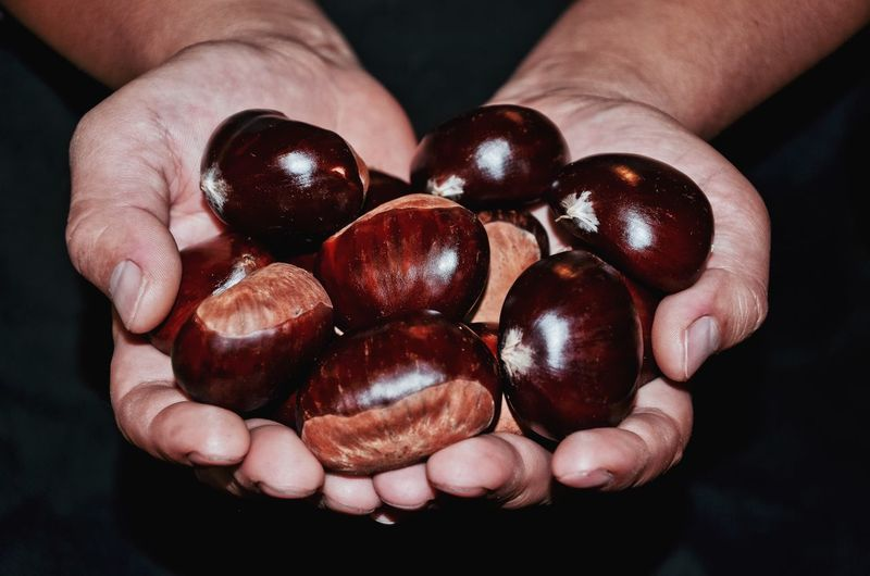 Cropped image of hands holding chestnuts
