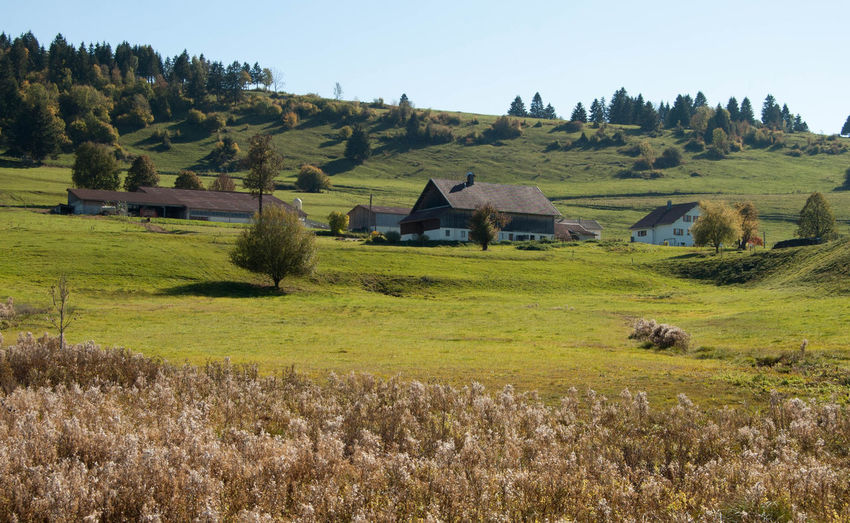 Landscape Land Plant Environment Grass House Sky Beauty In Nature Scenics - Nature Tranquil Scene Rural Scene Tree No People Champs Paysage Doubs Montagne Campagne Architecture Rurale Automne
