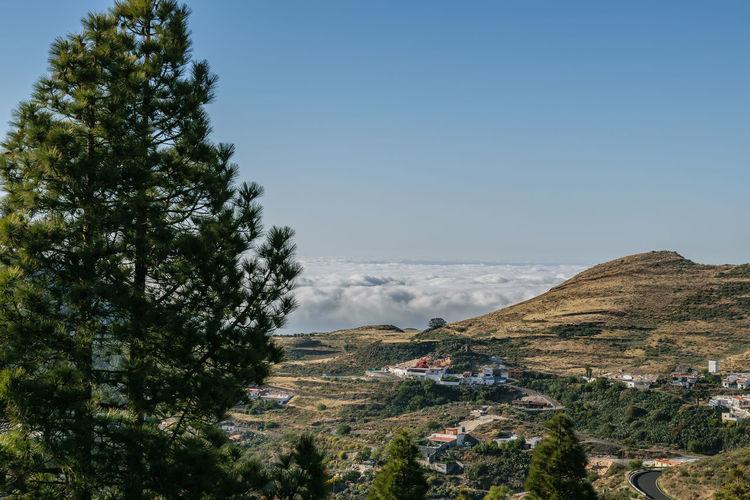 Fuerteventura y