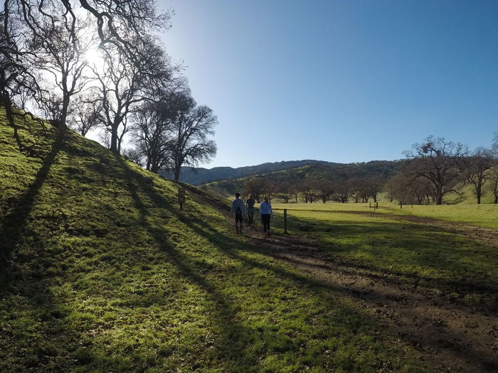 People walking on grassy field during sunny day