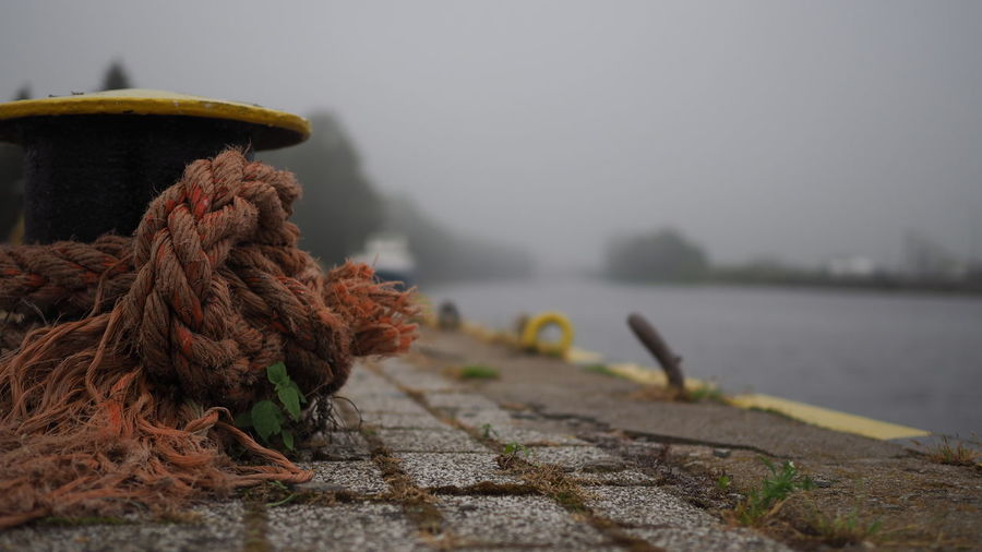 Close-up of rope tied to wooden pier