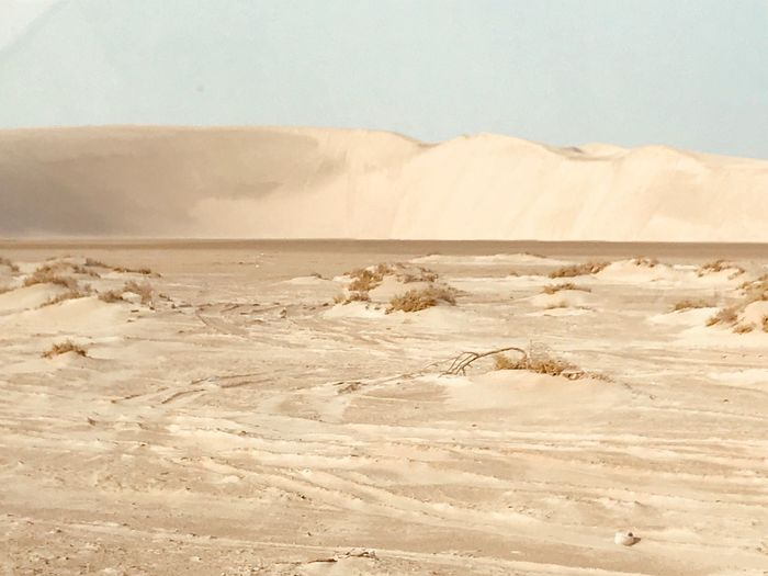 Arabian Moment Land Desert Sand Scenics - Nature Landscape Tranquility Tranquil Scene Sunlight Beach No People Day Remote Nature Non-urban Scene Sky Environment Arid Climate Sand Dune Beauty In Nature Climate