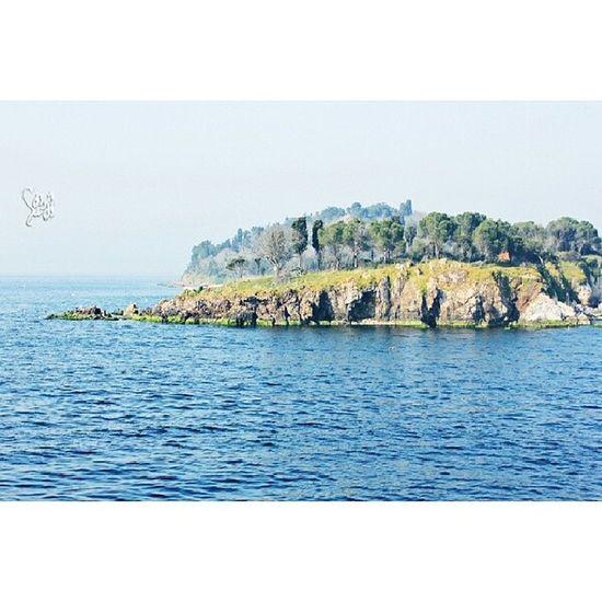 Photography  تصويري Turky  تركياmarmara_sea princessisland princess_island island