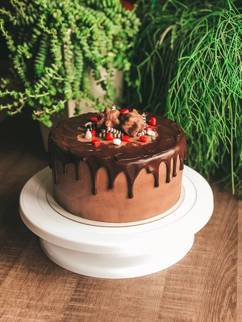 food, food and drink, sweet food, baked, cake, dessert, sweet, freshness, temptation, indulgence, no people, table, ready-to-eat, indoors, close-up, still life, focus on foreground, plate, plant, celebration, chocolate cake