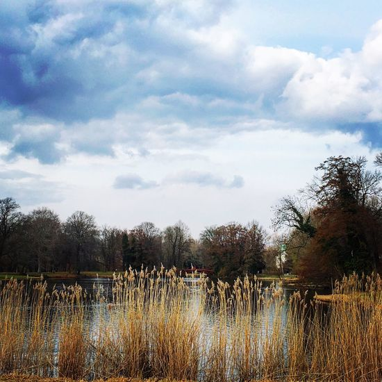 Calmness in the park Park Charlottenburg  Nature Nature Photography Blue Sky
