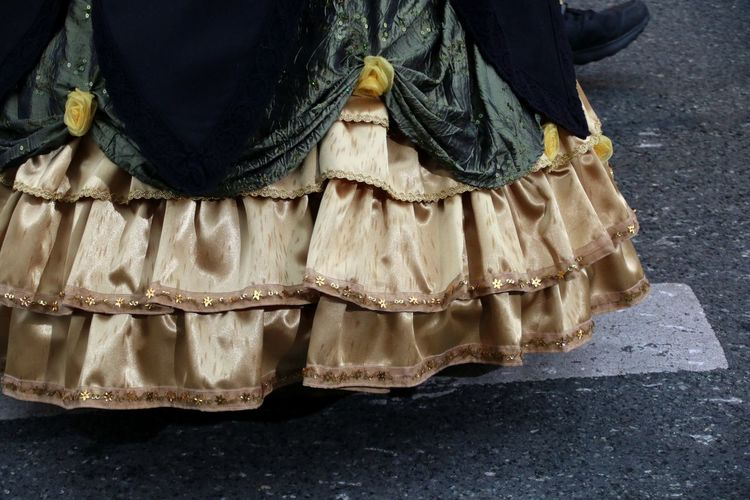 Low section of woman in costume standing on road