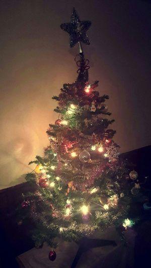 Hi! Hello World Noel2015 Sapin De Noël Joyeux Noël**Marry Chrismas**Feliz Natal