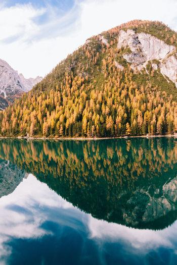 Autumn trees reflecting on calm lake
