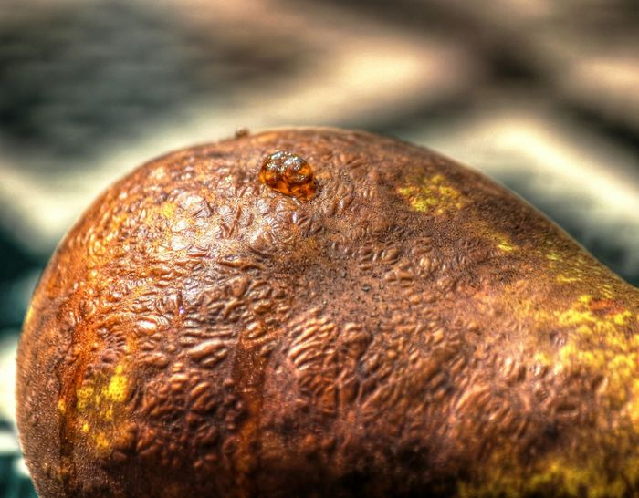 Nature On Your Doorstep Pear Rotting Rotting Away Decomposition