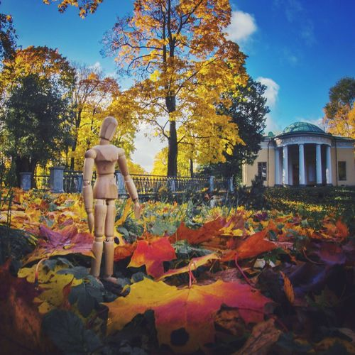Sunny autumn day Autumn Leaf Tree Full Length Architecture Beauty In Nature Creativity Human Representation Autumn Leaves Woodyforest Travel Destinations Russia Saint Petersburg