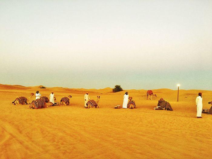 Desert in Dubai First Eyeem Photo