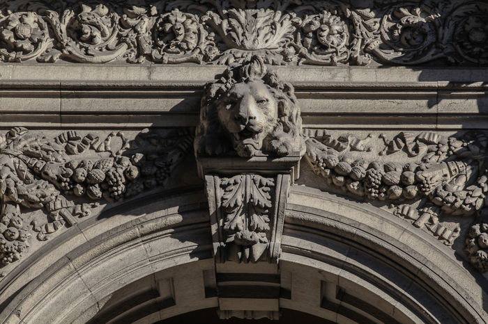 Lion in Via Dante Architecture Art And Craft Bas Relief Building Exterior Carving - Craft Product Close-up Day History Human Representation Lion - Feline Low Angle View No People Outdoors Sculpture Statue
