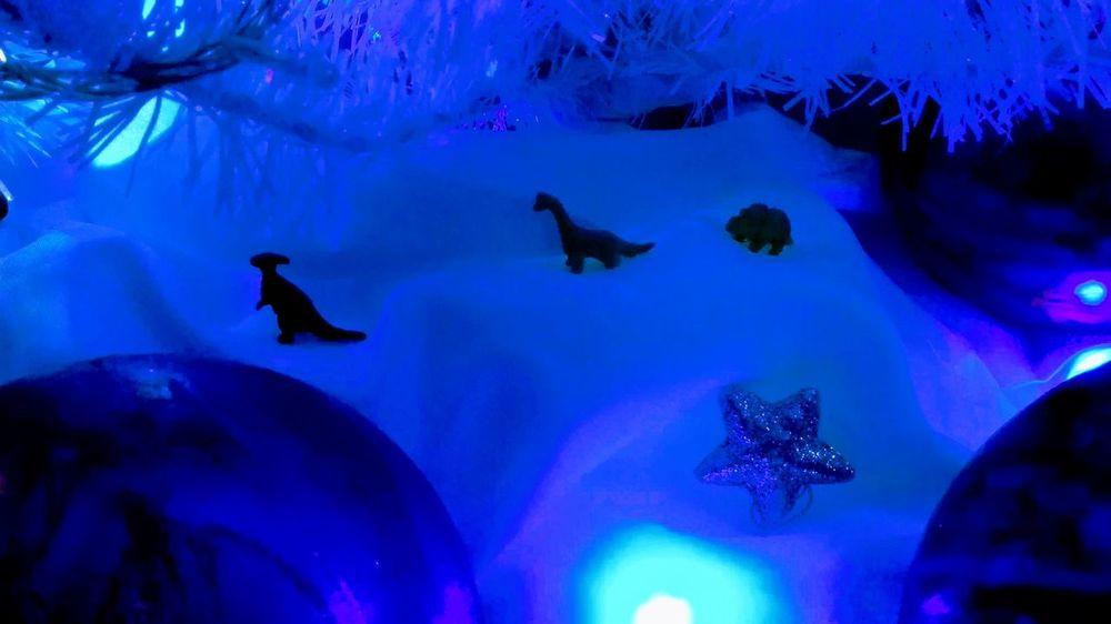 :3 Self Perspective Navidad Arbol Navidad Cold Temperature Winter Blue