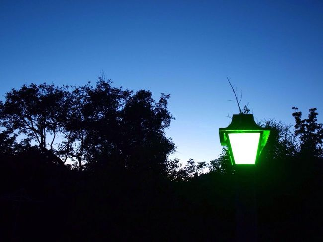 Low Angle View Lighting Equipment Illuminated No People Silhouette Outdoors Clear Sky Night Green Color Architecture Built Structure Growth Street Light Blue Nature Sky