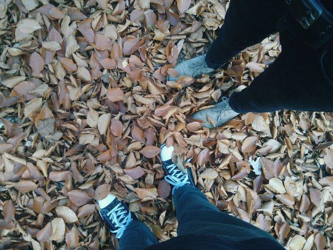 Autumn Carefree Fall Friendship Leaf Leafes Love Partnership Shoe Shoes ♥ Togetherness