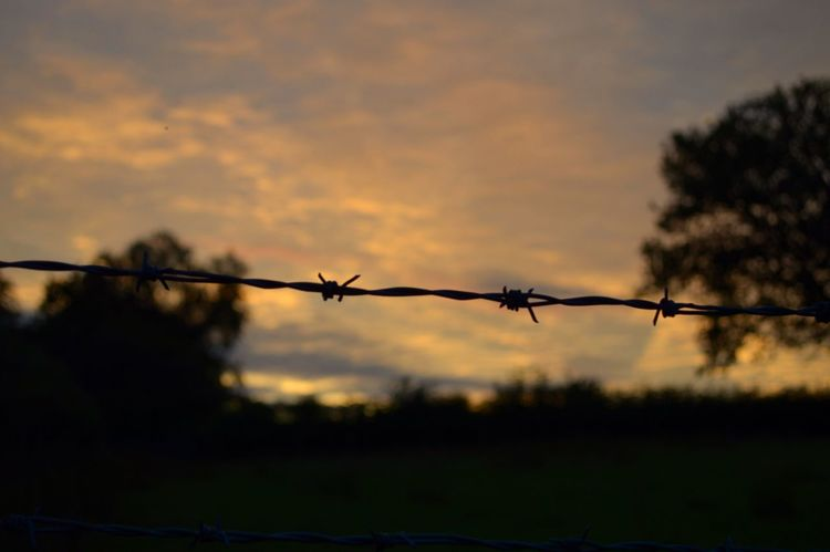 Barbed Wire Wednesday Sunset Silhouettes Skyporn Sunset_collection