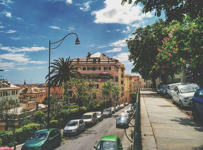 Street Lamp Monday EyeEm Best Shots Landscape_Collection Walking Around
