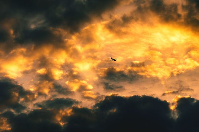Flying into Fire Flying Sunset Airplane Transportation Mode Of Transport Low Angle View Air Vehicle Cloud - Sky Scenics Cloudscape Atmospheric Mood Mid-air Silhouette Travel Beauty In Nature Dramatic Sky Sky Tranquil Scene Nature Tranquility