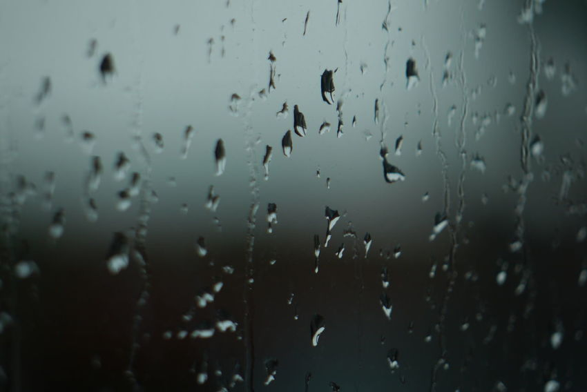 Panasonic DMC-G3   F/5,6   1/640 sek   ISO-160   200 mm Raindrops EyeEmNewHere BYOPaper!