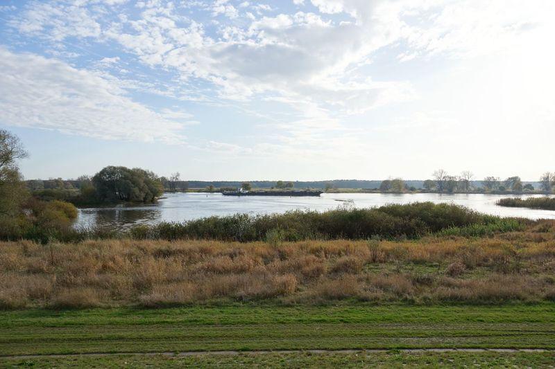 Beauty In Nature Cloud Cloud - Sky Elbe River Elberadweg Field Germany GERMANY🇩🇪DEUTSCHERLAND@ Growth Landscape Lower Saxony Nature Scenics Sky Tranquil Scene Tranquility