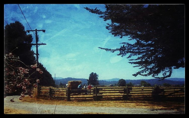 Taking Photos Home Sweet Home The Great Outdoors Ranch Life What I Did Today ~Hauling has begun~