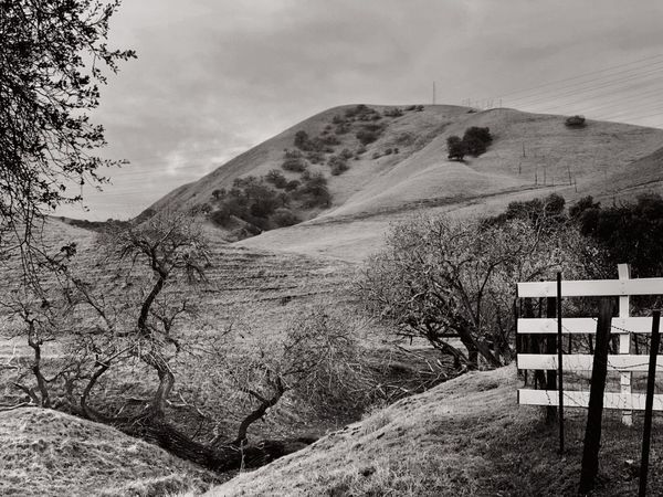 """""""At The End Of The Road"""" A rural road in the outlaying areas of the San Francisco East Bay Area, CA, ends at a ravine full of oak trees and a white fence barrier to a secluded ranch. Oak Tree Ravine GULLY Black And White Photography Black & White Black And White Blackandwhite Rural Exploration End Of Road Sky Nature Land Landscape Day Scenics - Nature Cloud - Sky Mountain Barrier Non-urban Scene Fence"""