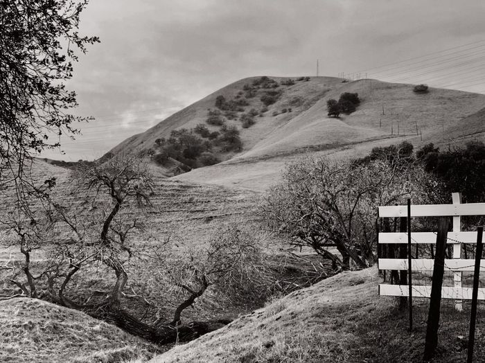 """At The End Of The Road"" A rural road in the outlaying areas of the San Francisco East Bay Area, CA, ends at a ravine full of oak trees and a white fence barrier to a secluded ranch. Oak Tree Ravine GULLY Black And White Photography Black & White Black And White Blackandwhite Rural Exploration End Of Road Sky Nature Land Landscape Day Scenics - Nature Cloud - Sky Mountain Barrier Non-urban Scene Fence"