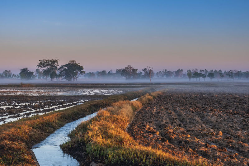 Small irrigation canal in the middle of the rice fields in the countryside roi et, thailand