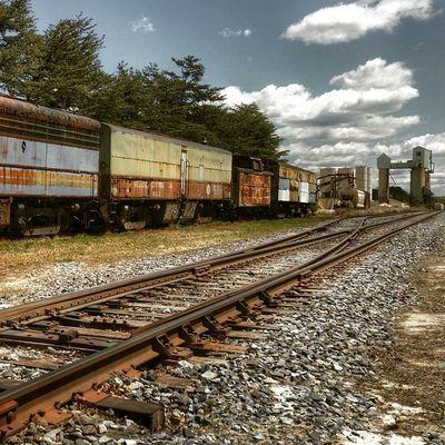 Abandoned Abandonedtrain Lostintime Forgottennj Trainyard Trains Oldandrusty Njinstagramer Dailydose Ilovetrains