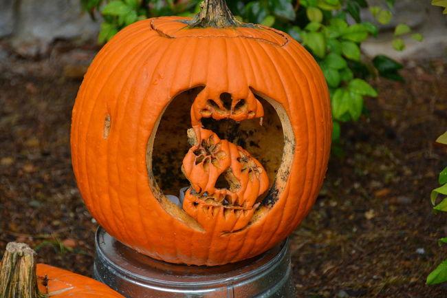 Anthropomorphic Face Autumn Celebration Close-up Day Dead Pumpkin Food Food And Drink Freshness Halloween Jack O Lantern Jack O' Lantern Nature No People Orange Color Outdoors Pumpkin Squash - Vegetable Vegetable