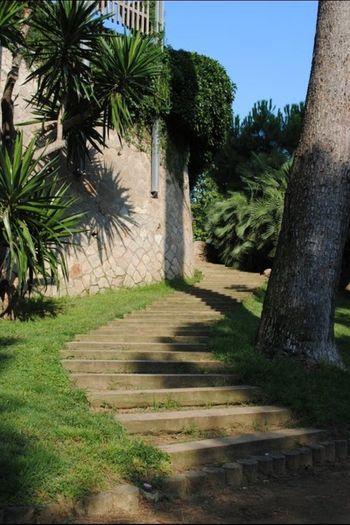 Parque Canbuxeres