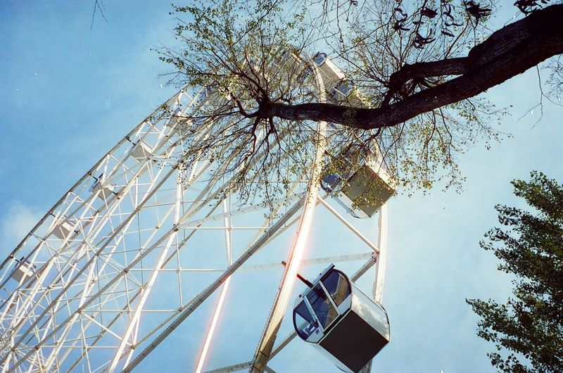 Tree Low Angle View Sky Plant Nature Outdoors Architecture Arts Culture And Entertainment Technology Cloud - Sky Safety Sunlight Built Structure Autumn Film 35mm 35mm Film 35mmfilmphotography Analogue Photography Mjuii Olympus